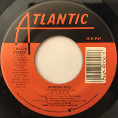 THE SYSTEM:DON'T DISTURB THE GROOVE(LABEL SIDE-B)