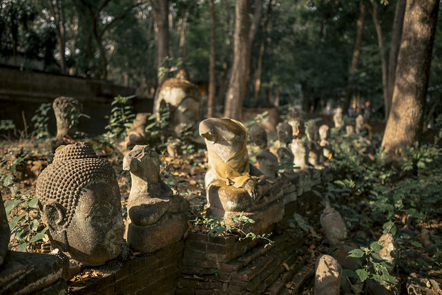 Umong's Buddhas