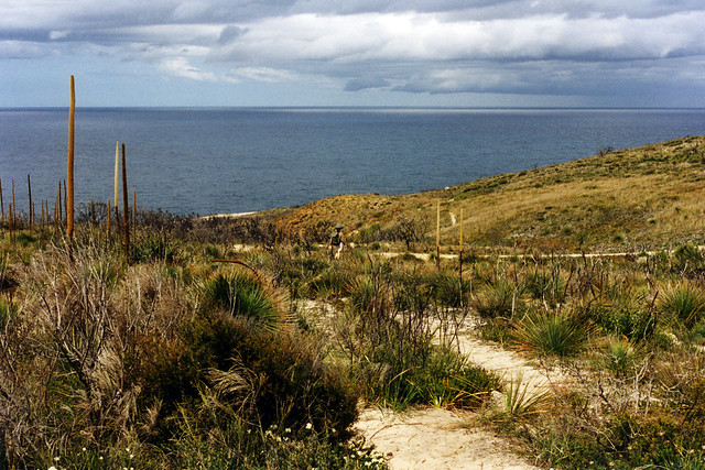 Coastal track