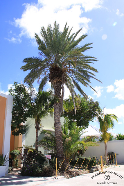 Grand Turk, Turks & Caicos (14)