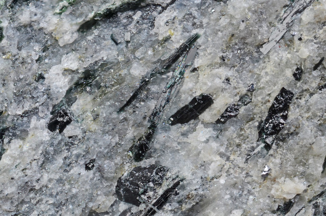 フェリウィンチ閃石 / Ferri-winchite