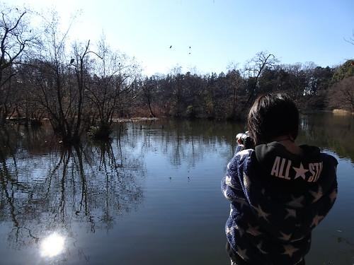 石神井公園で野鳥観察