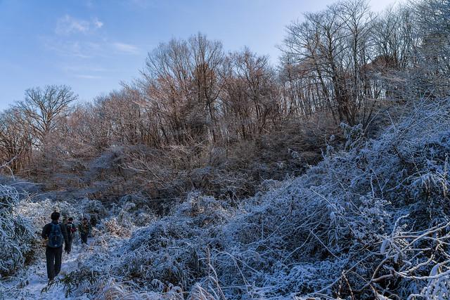 石老山の山道に向かう雪道