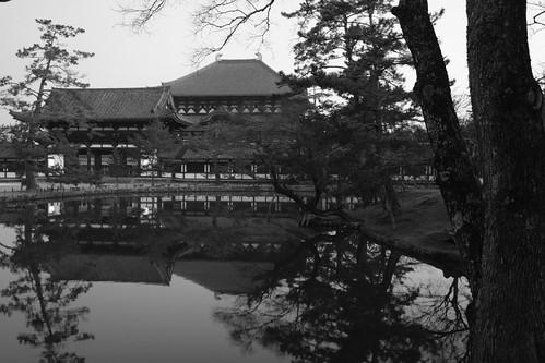 25-02-2019 Nara on morning (16)