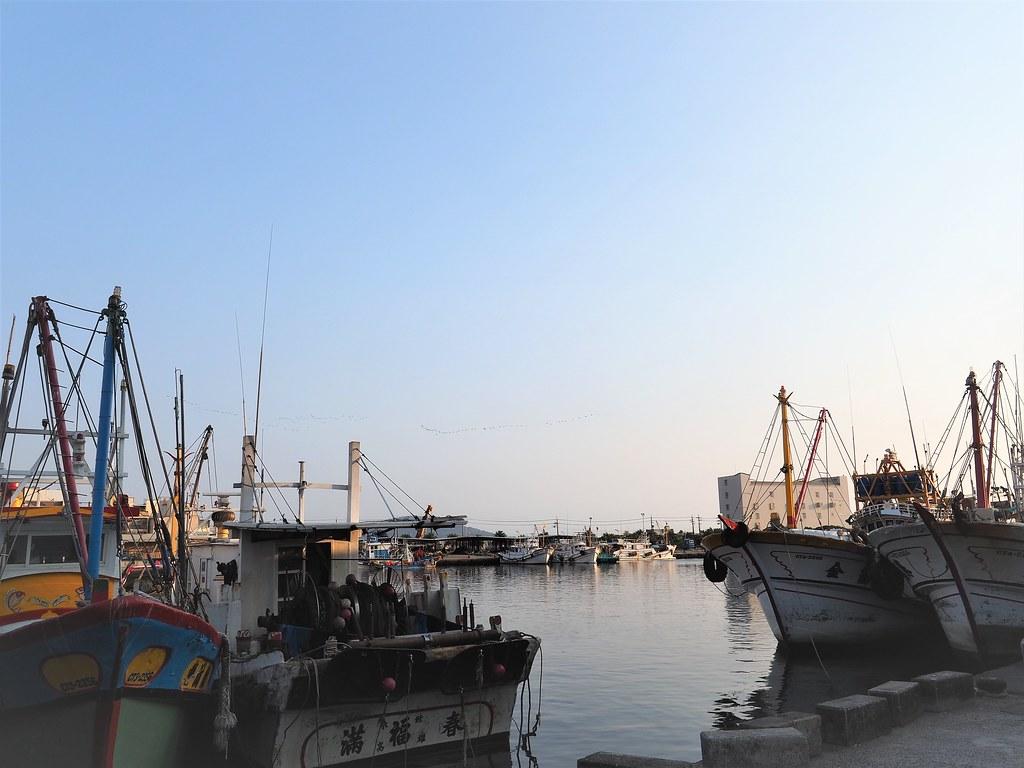 梓官觀光魚市場 (7)