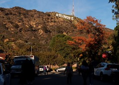 Would you like to live under HOLLYWOOD sign ?