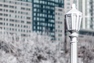 Frozen in Niagara
