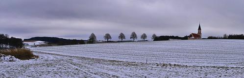 Baumreihe und Kirche