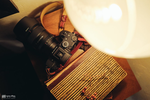 融化在情人的眼光裡:Sony FE 24mm F1.4 G Master | 09