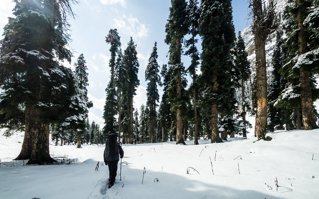 Hiking in Lidderwat during winters and betrayed by weather