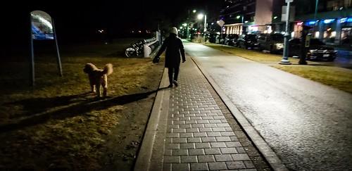Night at humber bay park