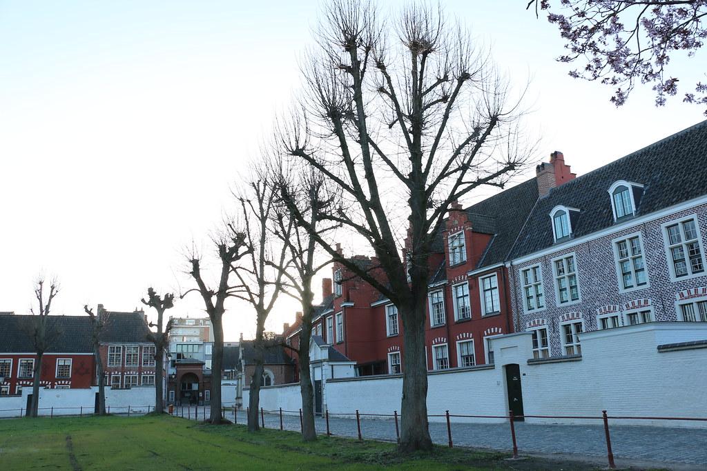 Belgien_mar19_240