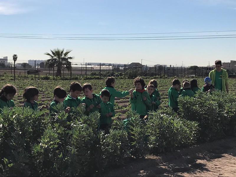 Visita a L'Alqueria Planta i Cull - 2019