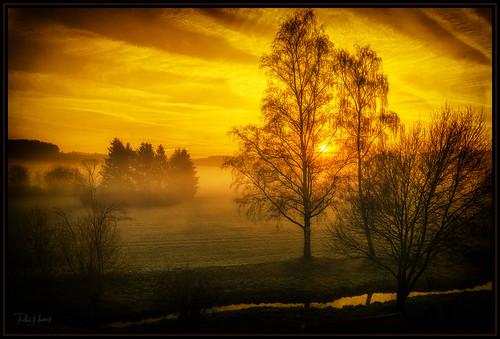 Nice sunrise today!