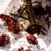 2019-2-6 Red velvet cake ice cream