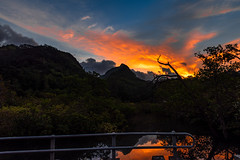 A new day in the Seychelles