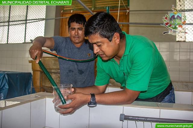Más de un millón de postlarvas fueron reproducidas en el centro de producción de peces amazónicos