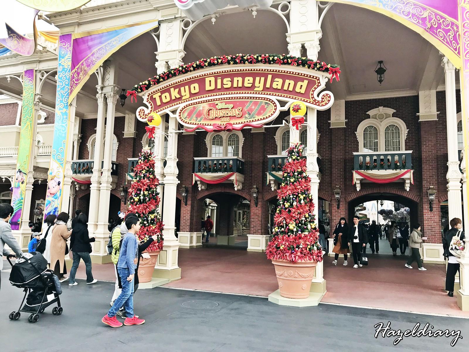 Tokyo Disneyland Japan-3