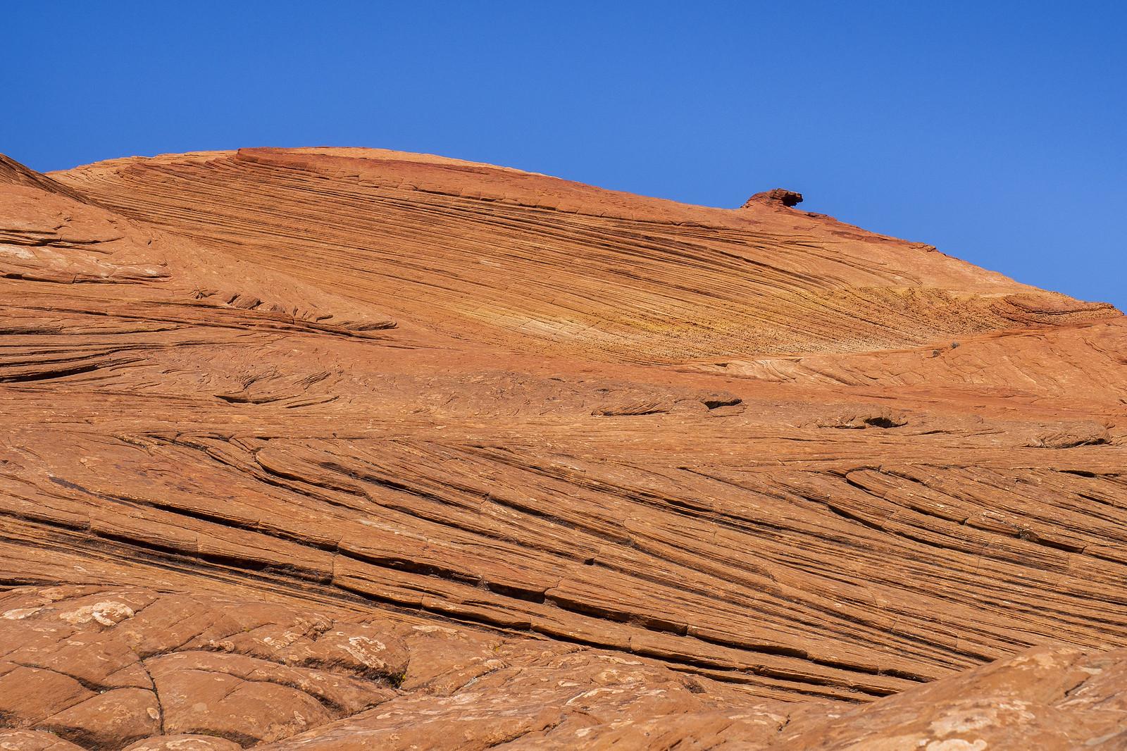Patrified Sand Dunes