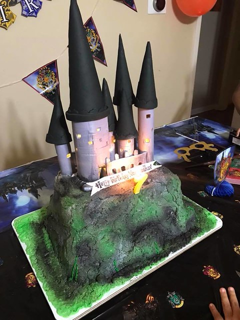 Castle Cake by Radha's Cakes