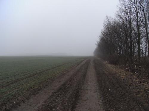 20100317 0204 063 Jakobus Weg Feld Nebel Bäume