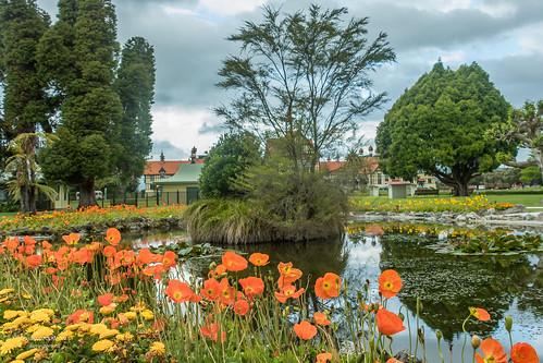Government Garden, Rotorua, New Zealand