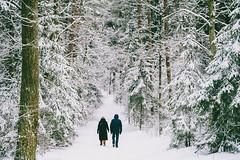 Walking in the forest | Kleboniškis | Kaunas #19/365