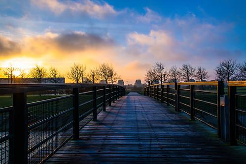 ribban bro sunlight malmö bridge morninglight himmel silhouette sweden soluppgång sky solljus ribersborg sunrise skånelän sverige se