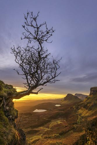 Clinging On For Dear Life, Sunrise at Quiraing, Isle of Skye, Scotland