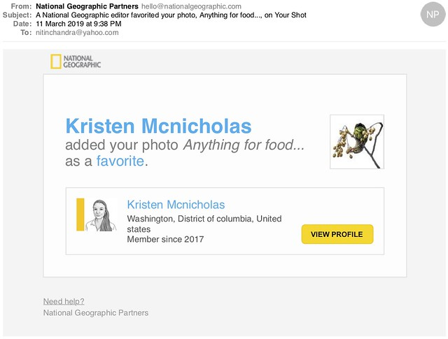 A National Geographic editor favorited your photo Anything for food on Your Shot
