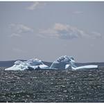 Iceberg floating by