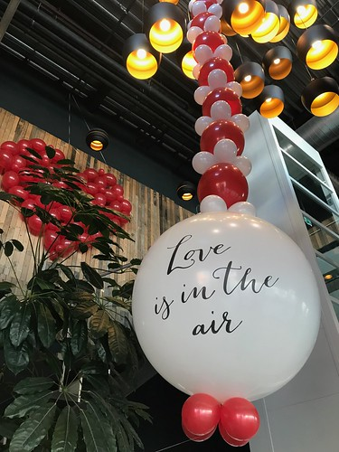 Ballonslinger Love is in the Air en Ballonnenwand Valentijnsdag Watertuin Spijkenisse