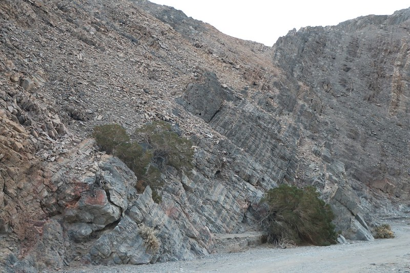 Angled rock strata in Cottonwood Canyon Wash as we head through the narrow section