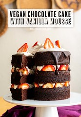 Vegan Chocolate Layer Cake with Vanilla Mousse