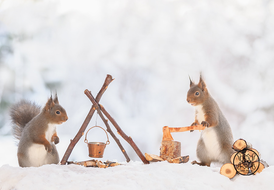 Red squirrels standing with a axe and a fire place