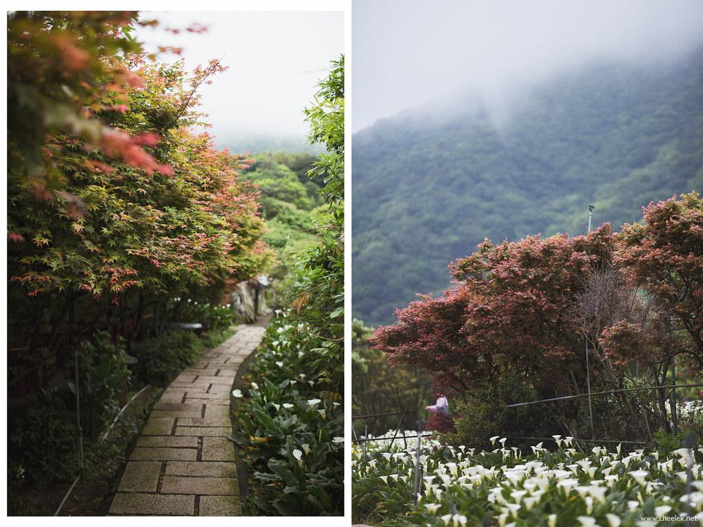 Taiwan_Flickr-037