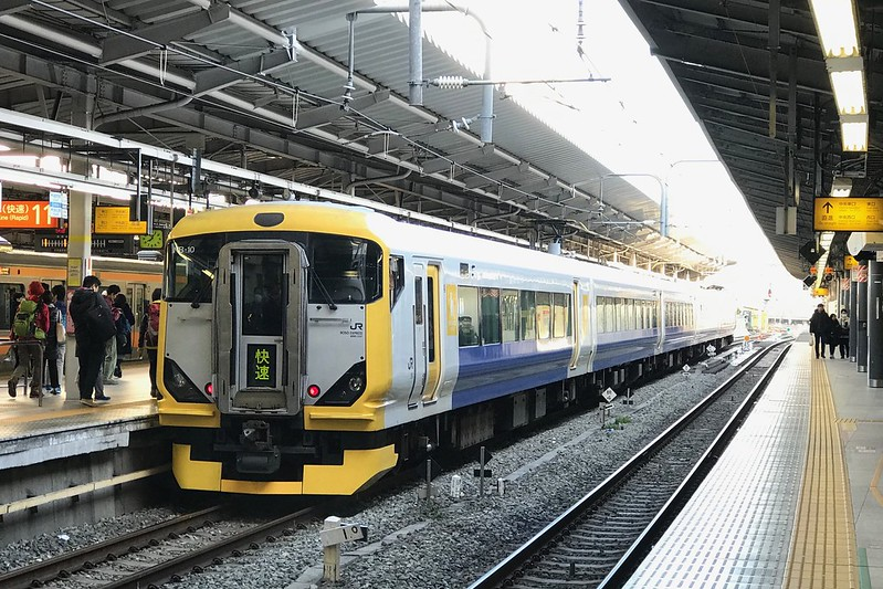 E257系 ホリデー快速富士山