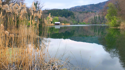Early spring on the small lake -