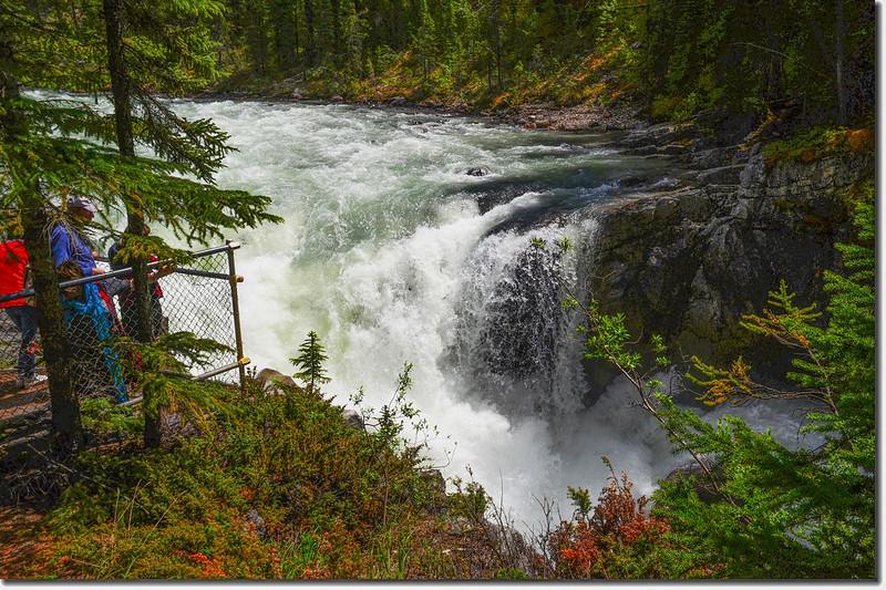 Sunwapta Falls  (6)