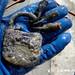 Magneetvisser vindt gereedschap en magazijn van een handwapen