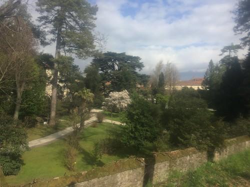 Lucca 5