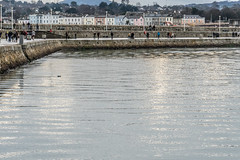 A VISIT TO THE EAST PIER IN DUN LAOGHAIRE [CHRISTMAS WEEK 2018]-146594