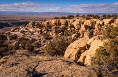 Westwater Mesa Loop (12-30-18)