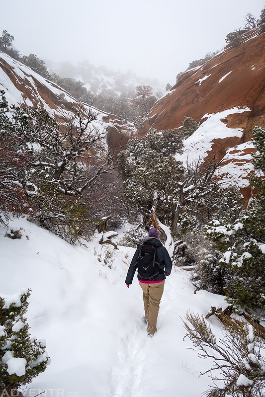 Hiking Into The Alcove