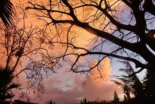 2018-12-24 - Clouds after the Rain Storm
