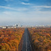 colorful autumn in Berlin by Qba from Poland / qmphotostudio