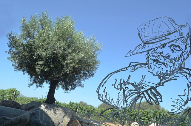 Clos Culombu vineyard, Corsica
