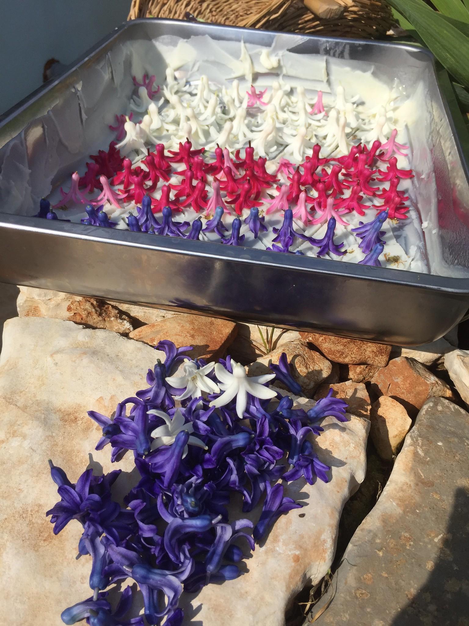 Hyacinth Enfleurage, 3rd Batch
