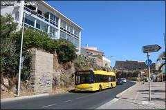 Solaris Urbino 12 - CarPostal Bassin de Thau / Sète Agglopôle Méditerranée n°74