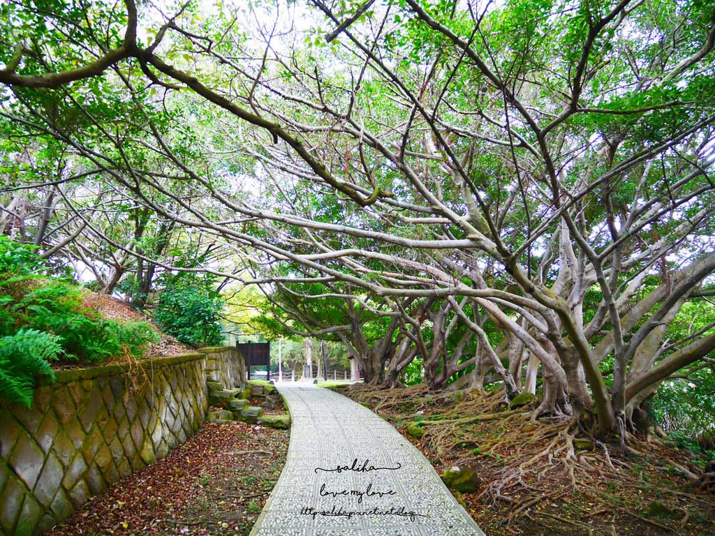 台北陽明山一日遊景點推薦硫磺谷龍鳳谷公園免費泡湯溫泉泡腳池 (9)